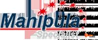 Логотип партнёр Manipula